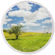 Single Apple Tree In Maine Blueberry Field Round Beach Towel