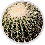 Single Cactus Ball Round Beach Towel
