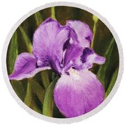 Single Iris Round Beach Towel