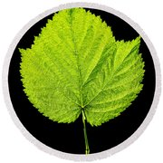 Single Leaf From Raspberry Bush Round Beach Towel