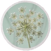 Single Queen Anne's Lace Round Beach Towel
