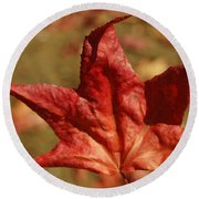 Single Red Maple Leaf Round Beach Towel