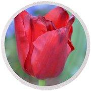 Single Red Tulip Round Beach Towel