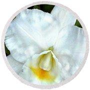 Single White Cattleya Orchid Round Beach Towel