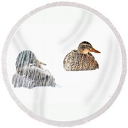 Sitting Ducks In A Blizzard Round Beach Towel