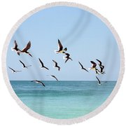 Skimmers And Swimmers Round Beach Towel by Carol Groenen