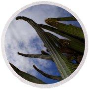 Sky Cactus Round Beach Towel