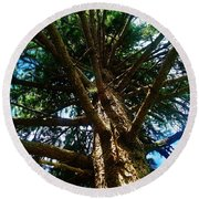 Skyward Spruce Round Beach Towel