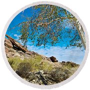Slanted Rocks And Sycamore Tree  In Andreas Canyon In Indian Canyons-ca Round Beach Towel