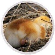Sleeping Chick Round Beach Towel