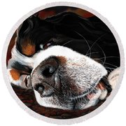 Sleeping Dogs Lie Round Beach Towel
