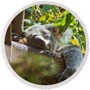 Sleeping Koala Round Beach Towel
