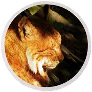 Sleeping Lynx  Round Beach Towel