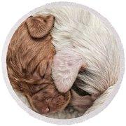Sleeping Puppies Round Beach Towel