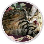 Sleeping Tabby Round Beach Towel