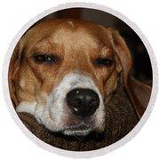 Sleepy Beagle Round Beach Towel
