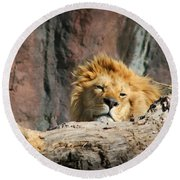 Sleepy Lion Round Beach Towel