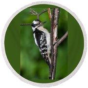 Sleepy Woodpecker Round Beach Towel