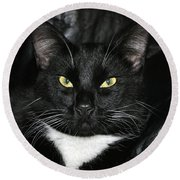 Slick The Black Cat Round Beach Towel