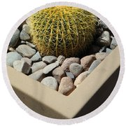 Small Barrel Cactus In Planter Round Beach Towel