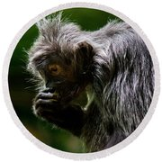Small Monkey Eating Round Beach Towel