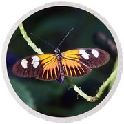 Small Postman Butterfly Round Beach Towel