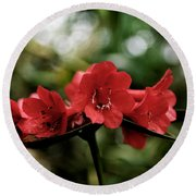 Small Red Flowers Round Beach Towel