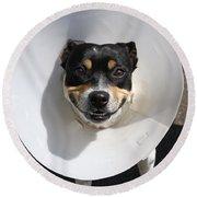 Smiling Dog Round Beach Towel