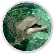 Smiling Dolphin Round Beach Towel