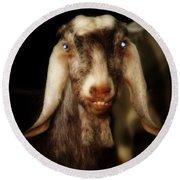 Smiling Egyptian Goat II Round Beach Towel