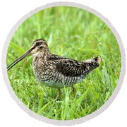 Smiling Snipe Round Beach Towel