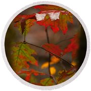 Smoky Mountain Color II Round Beach Towel