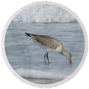 Snacking Sandpiper Round Beach Towel