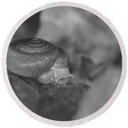 Snail In Black And White Round Beach Towel