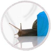 Snail Next To Miniature Mail Envelope Round Beach Towel