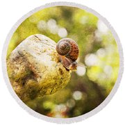 Snail Of A Time Round Beach Towel