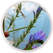 Snail On Flowers Round Beach Towel