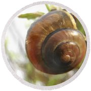 Snail Watercolor - Digital Painting Effect Round Beach Towel