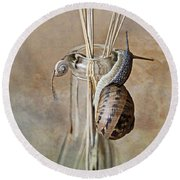 Snails Round Beach Towel