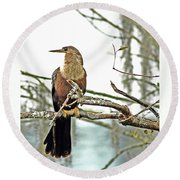Snake Bird Round Beach Towel