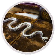 Snake Skeleton And Old Books Round Beach Towel