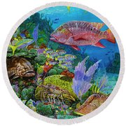 Snapper Reef Re0028 Round Beach Towel