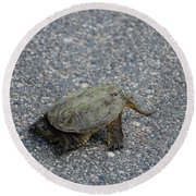 Snapping Turtle 3 Round Beach Towel