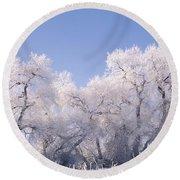 Snow And Ice Blanket Cottonwood Trees Round Beach Towel
