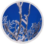 Snow And Ice Coated Branches Round Beach Towel