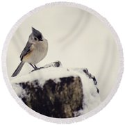 Snow Bird Round Beach Towel