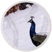 Snow Bird Round Beach Towel