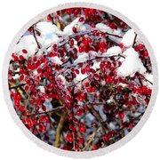 Snow Capped Berries Round Beach Towel