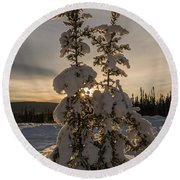 Snow Capped Sitka Spruce Round Beach Towel