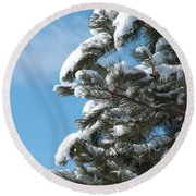 Snow-clad Pine Round Beach Towel